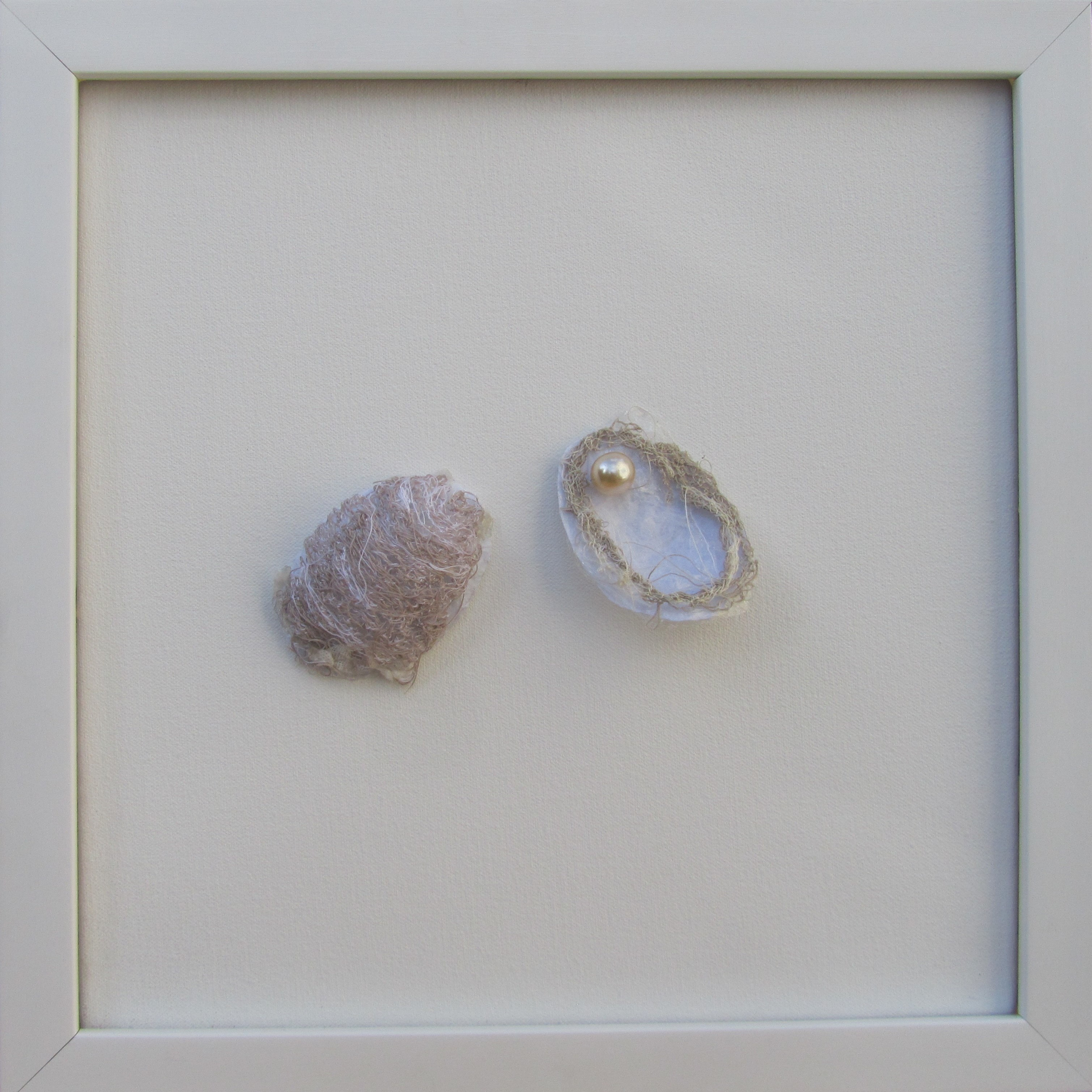 Oyster shells CE ASM 18